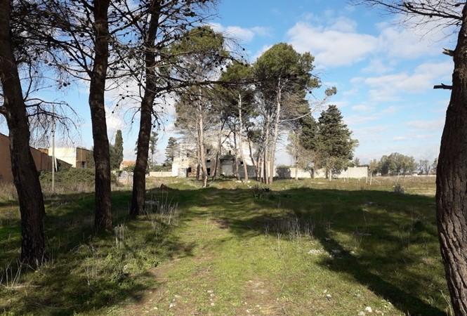San Cesario - Via Curtiglione