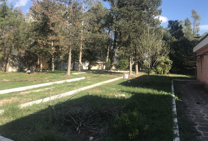 Novoli - Via Giacomo Matteotti